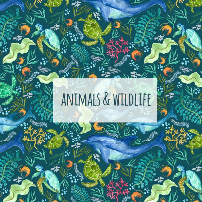 Susanne Mason design, animals & wildlife
