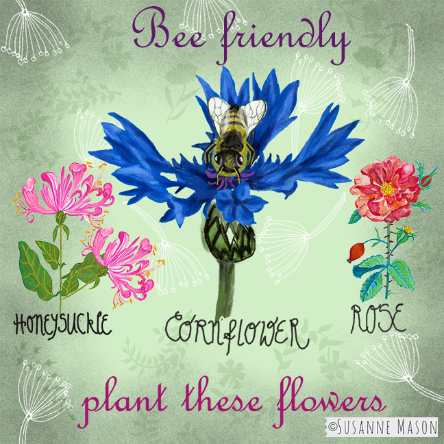 Bee friendly plants, by Susanne Mason
