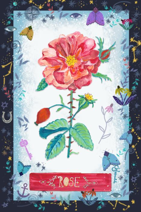 Rose, by Susanne Mason