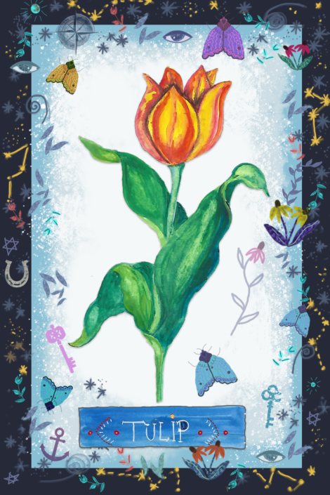 Tulip, by Susanne Mason
