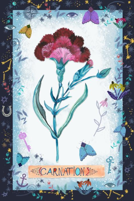 Carnation,by Susanne Mason