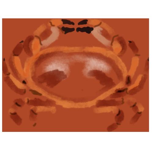 Cromer Crab, by Susanne Mason